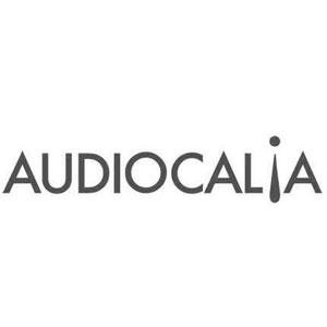 Contacto Agencia de marketing - cliente logo Audiocalia