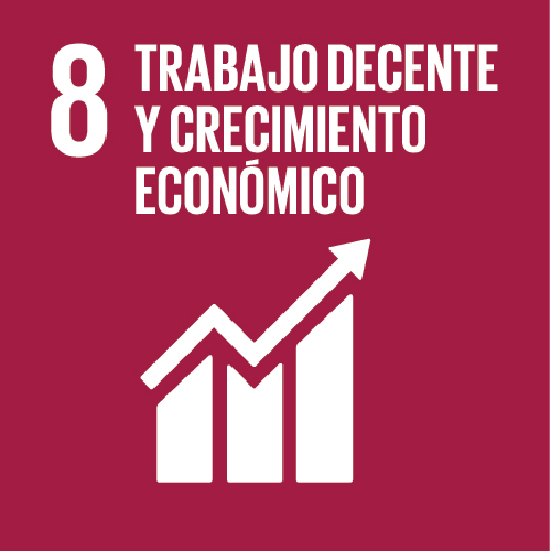ODS 8 Trabajo decente y crecimiento económico