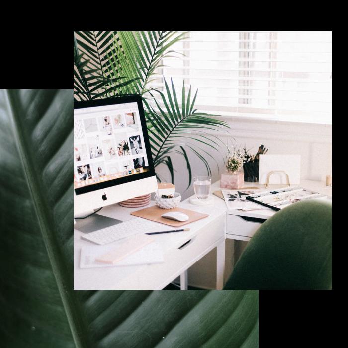 Office in Green Marketing Agency