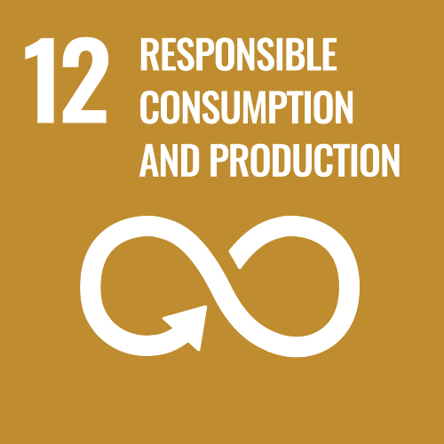 ODS 12 responsable, consumption and production